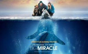2012_big_miracle_wallpaper_006