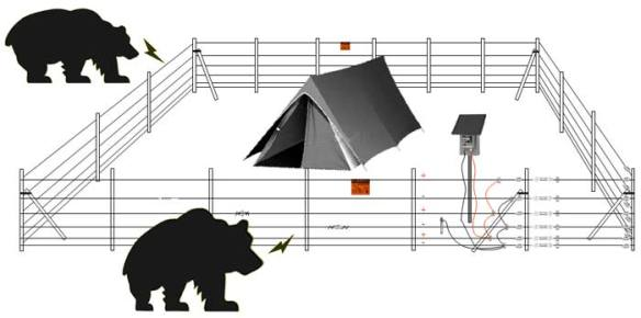 electric_bear_fence