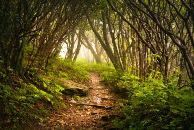 hike_072412_620px