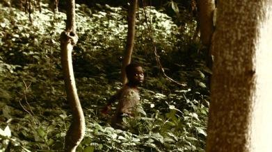john-uganda-forest