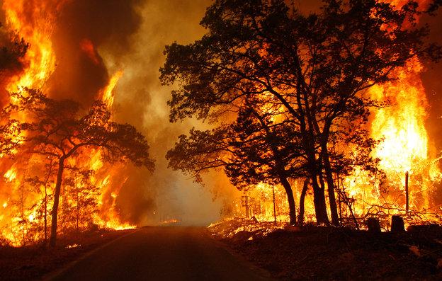 rsz_wildfire